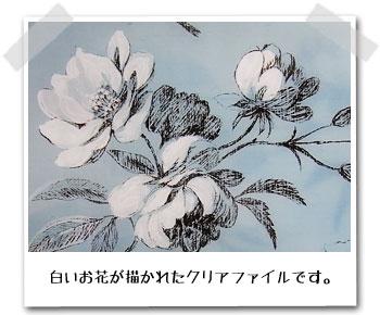 クリアホルダーには、白いお花が描かれています。